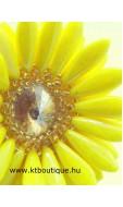 Gerbera, sárga